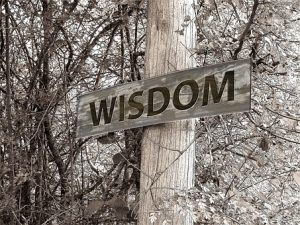 Experience is a big thing in the moving company world. The more experience a company has, the better their moves are. Wisdom comes from experience and is essential in a perfect move.
