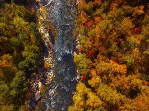 Aerial view of nature, autumn trees and river are the common environments in our top picks for best cities for singles in NC