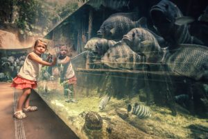 A little girl next to the fish tank in a zoo